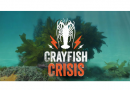 Calls for more conservative management of crayfish stocks