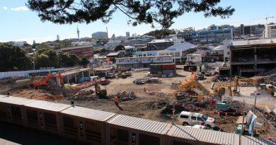 $790 million Newmarket development a container hot spot