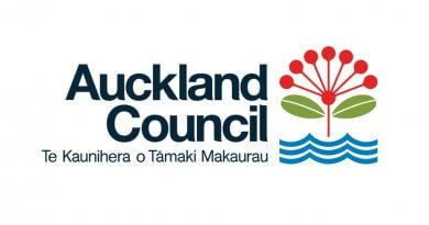Council continues to crack down on substandard property development